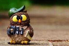 owl-964011_640 (2).jpg